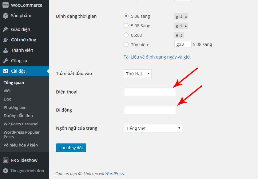 option wordpress