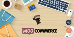 theme woocommerce